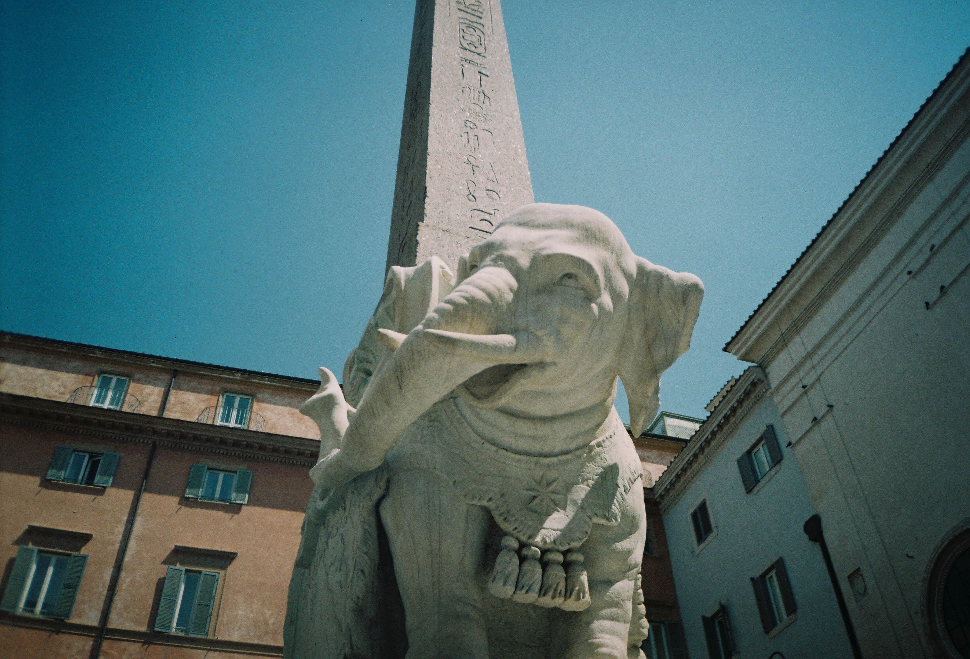 http://lafilladelfotografu.irenavisa.com/files/gimgs/101_f1000009-1.jpg