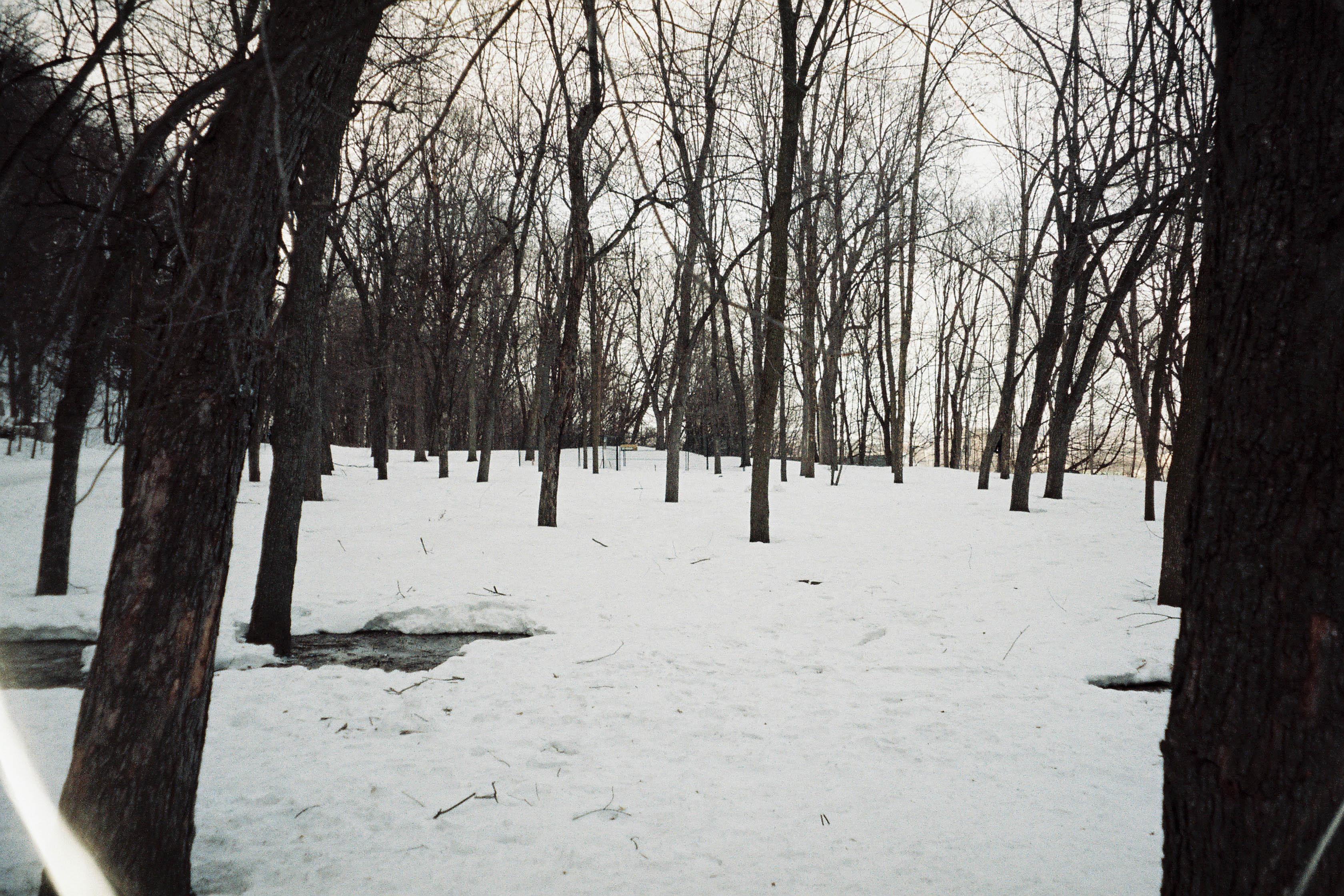 http://lafilladelfotografu.irenavisa.com/files/gimgs/103_f1000031-1.jpg