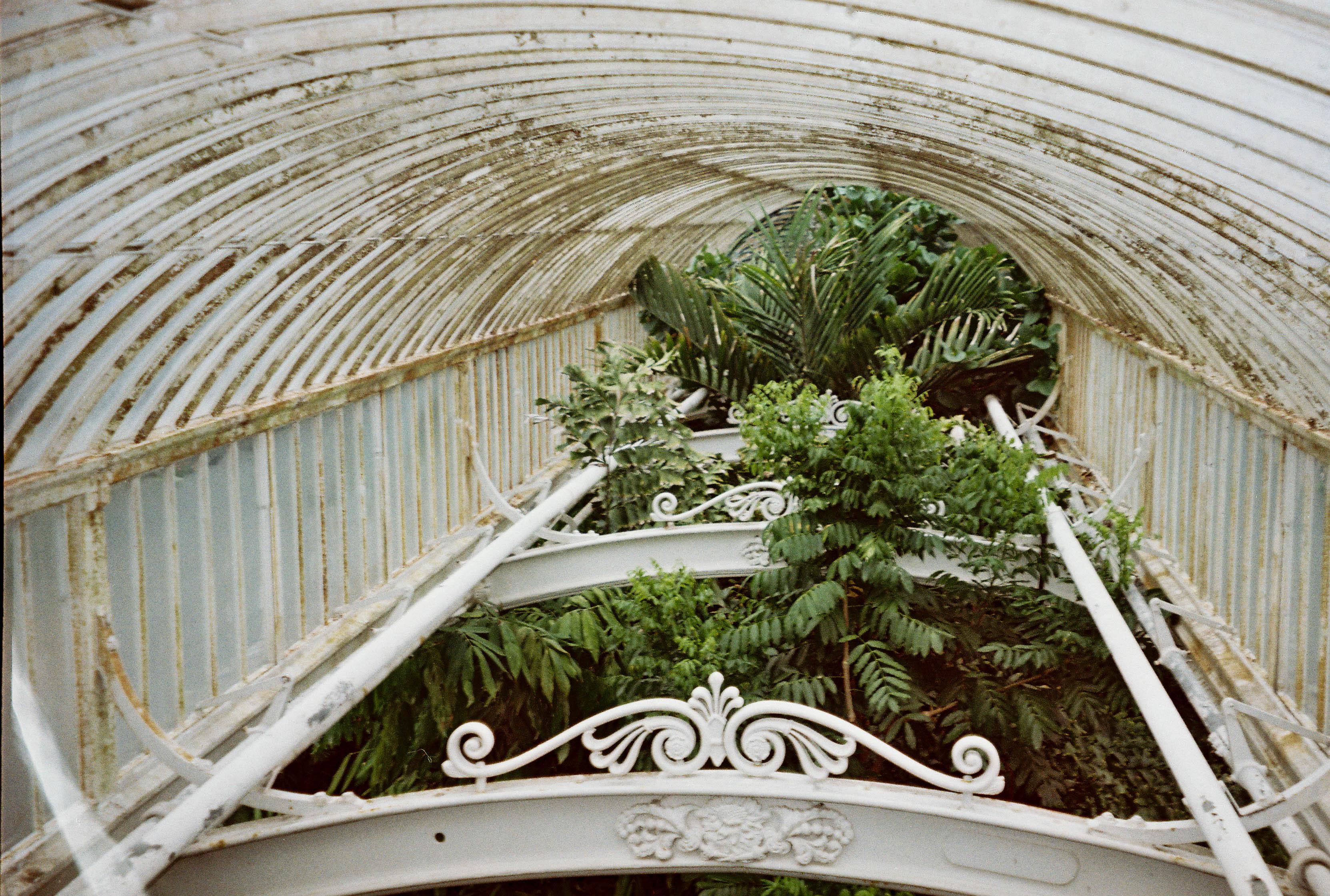 http://lafilladelfotografu.irenavisa.com/files/gimgs/107_cnv000029-1.jpg