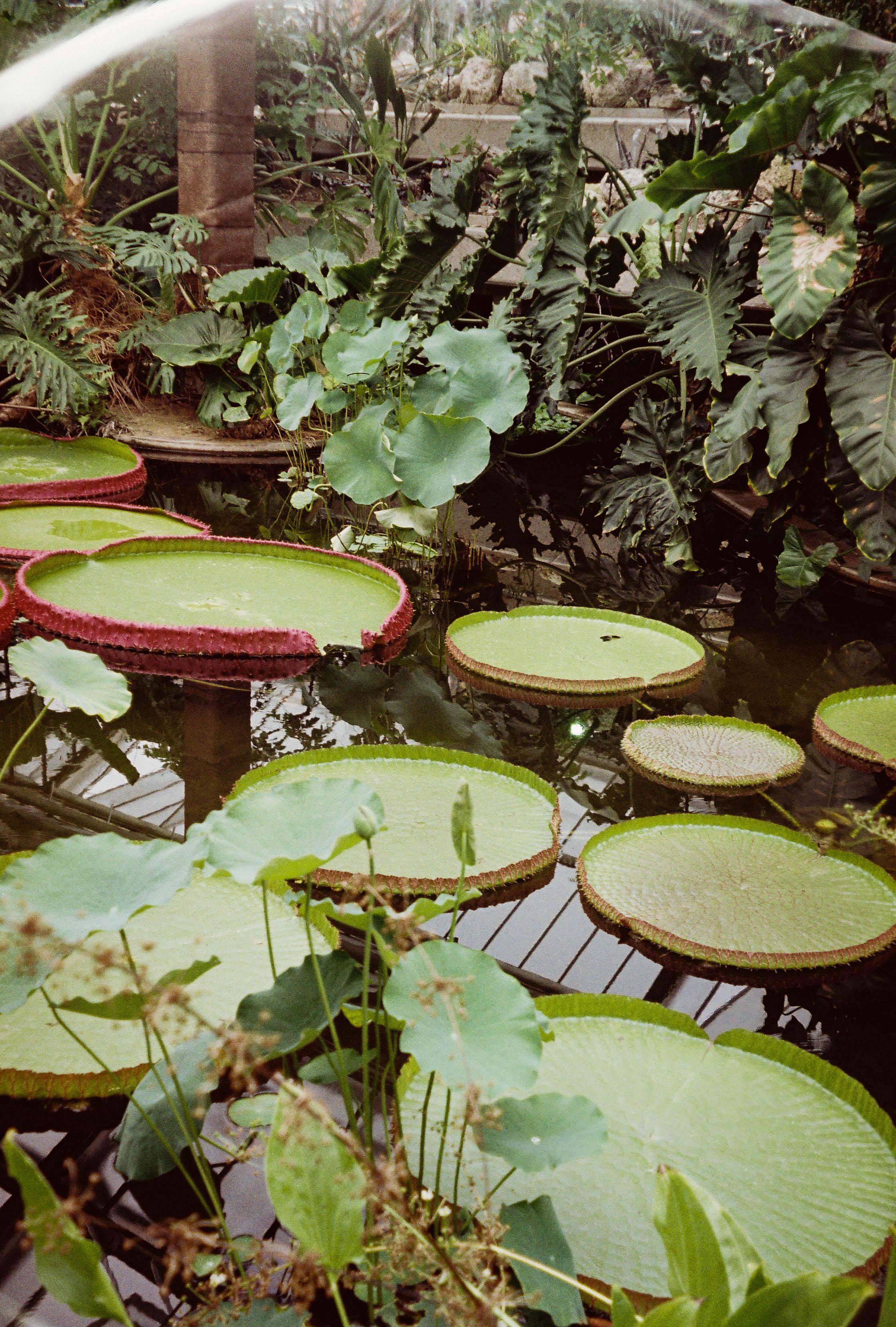 http://lafilladelfotografu.irenavisa.com/files/gimgs/107_cnv000032-1.jpg