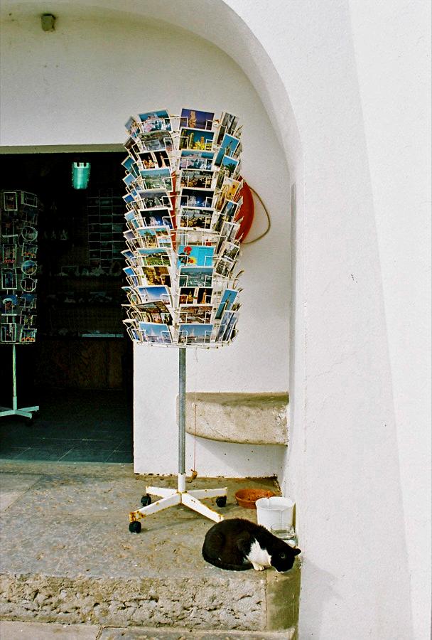 http://lafilladelfotografu.irenavisa.com/files/gimgs/25_gat.jpg