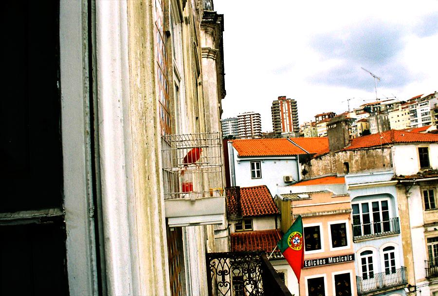 http://lafilladelfotografu.irenavisa.com/files/gimgs/25_ocell.jpg