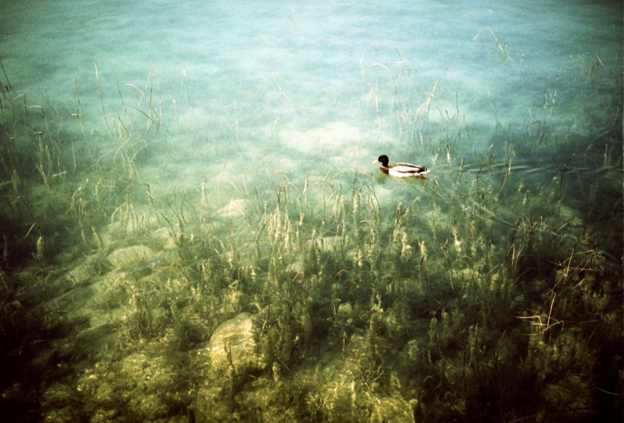 http://lafilladelfotografu.irenavisa.com/files/gimgs/29_sin-titulo-32.jpg