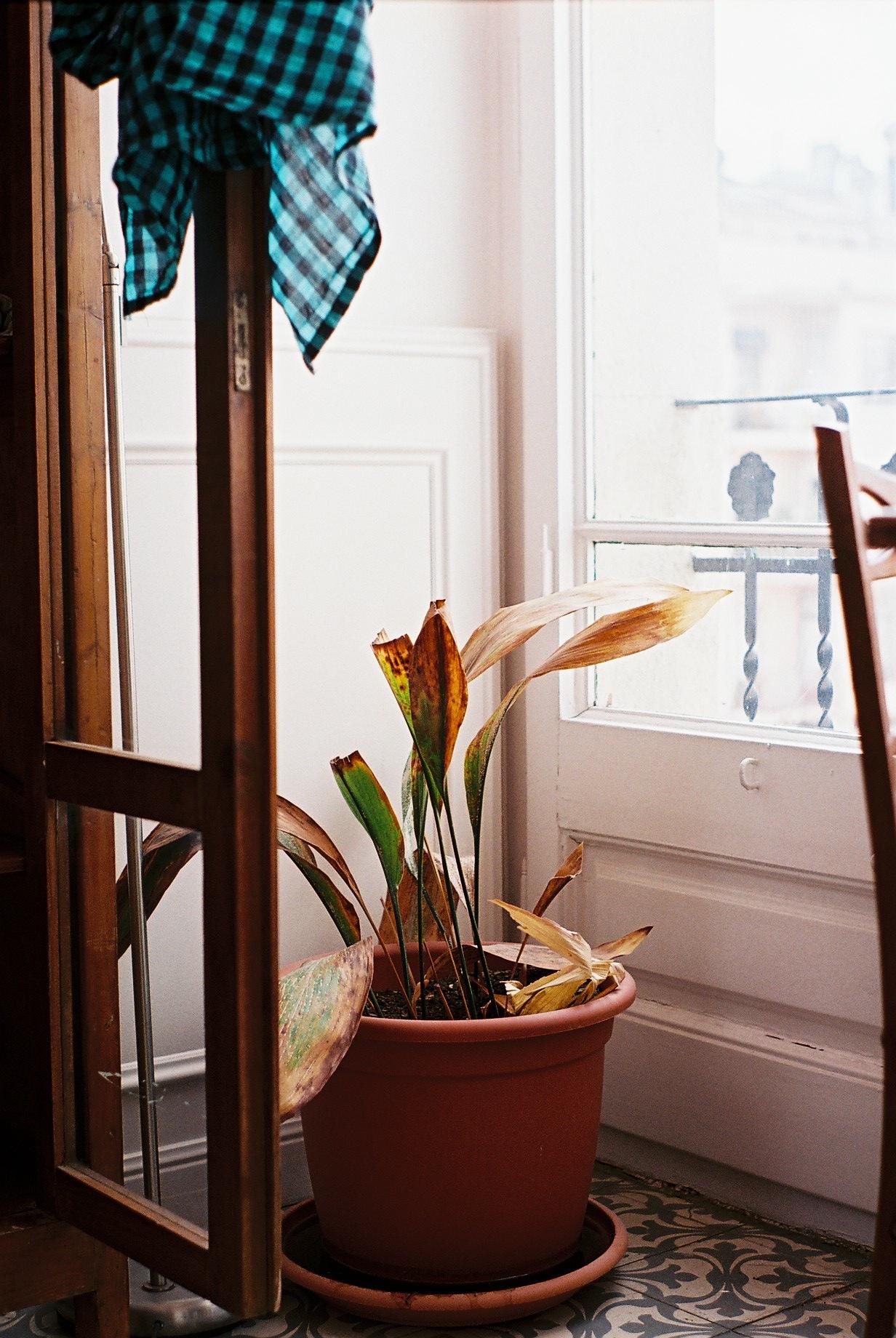 http://lafilladelfotografu.irenavisa.com/files/gimgs/60_f1010015.jpg