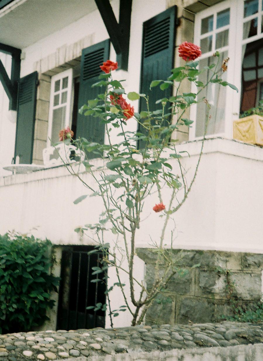 http://lafilladelfotografu.irenavisa.com/files/gimgs/65_f1000018-1_v2.jpg