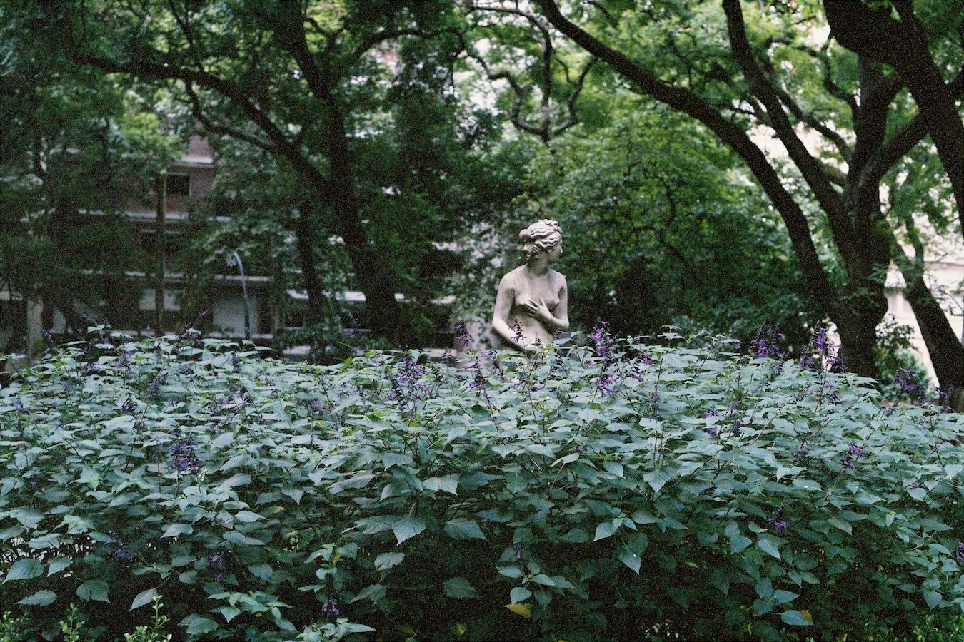http://lafilladelfotografu.irenavisa.com/files/gimgs/88_f1010012-1.jpg