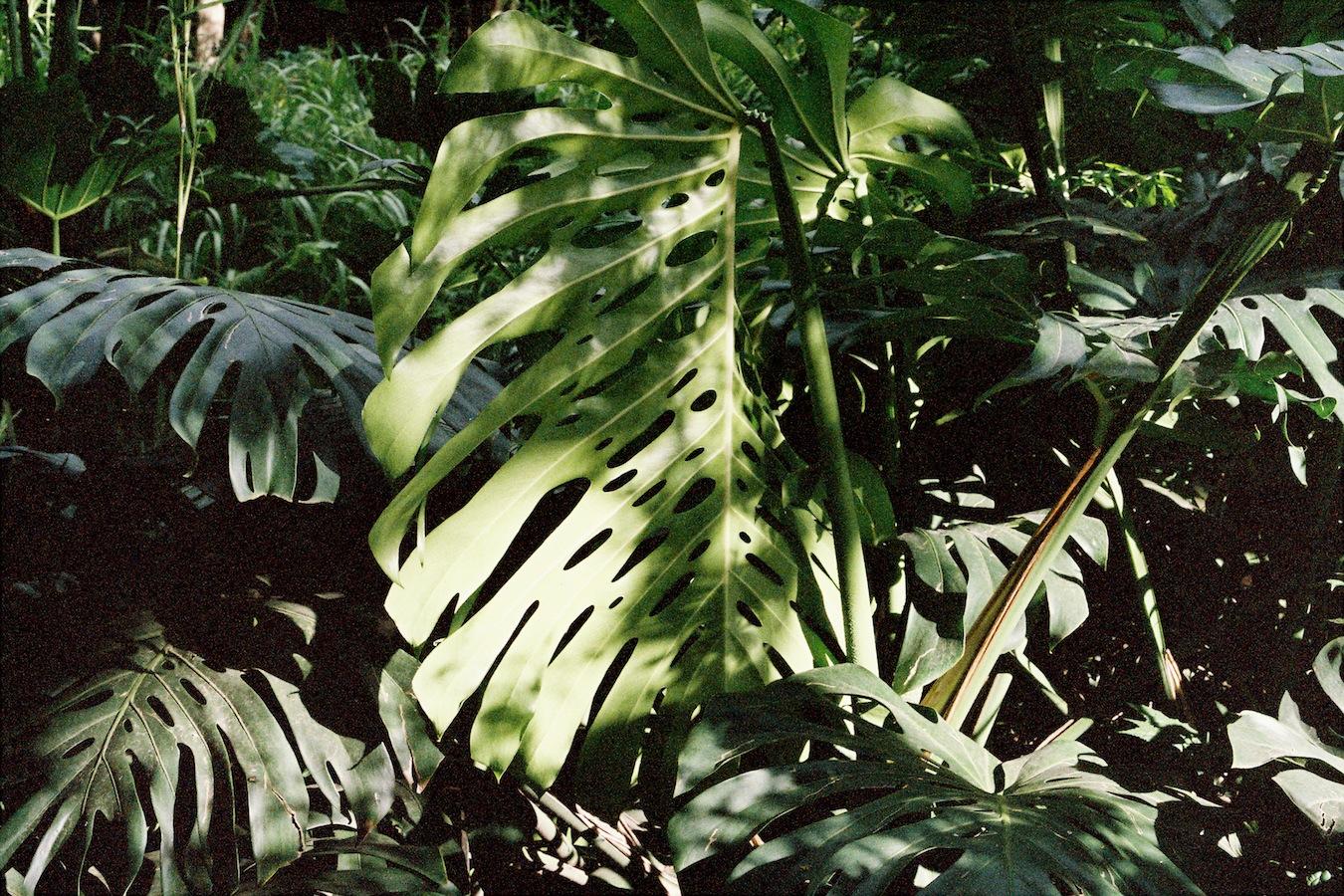 http://lafilladelfotografu.irenavisa.com/files/gimgs/88_f1020027-1.jpg