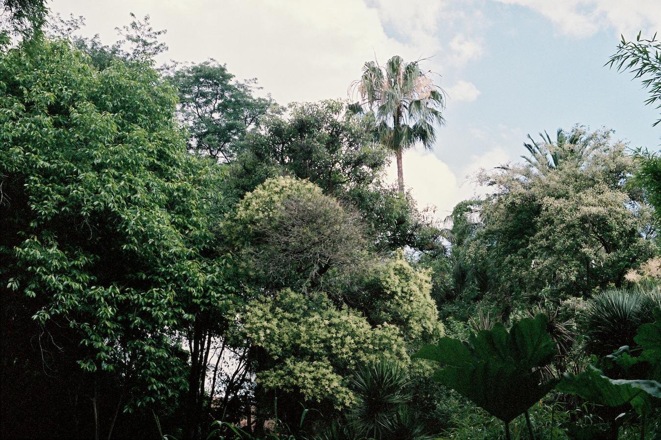 http://lafilladelfotografu.irenavisa.com/files/gimgs/88_f1020028-1.jpg