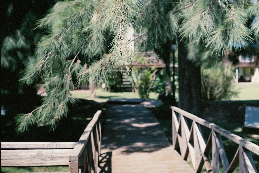 http://lafilladelfotografu.irenavisa.com/files/gimgs/90_f1010036-1.jpg