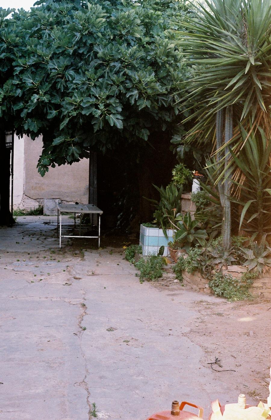 http://lafilladelfotografu.irenavisa.com/files/gimgs/92_f1000017-1.jpg
