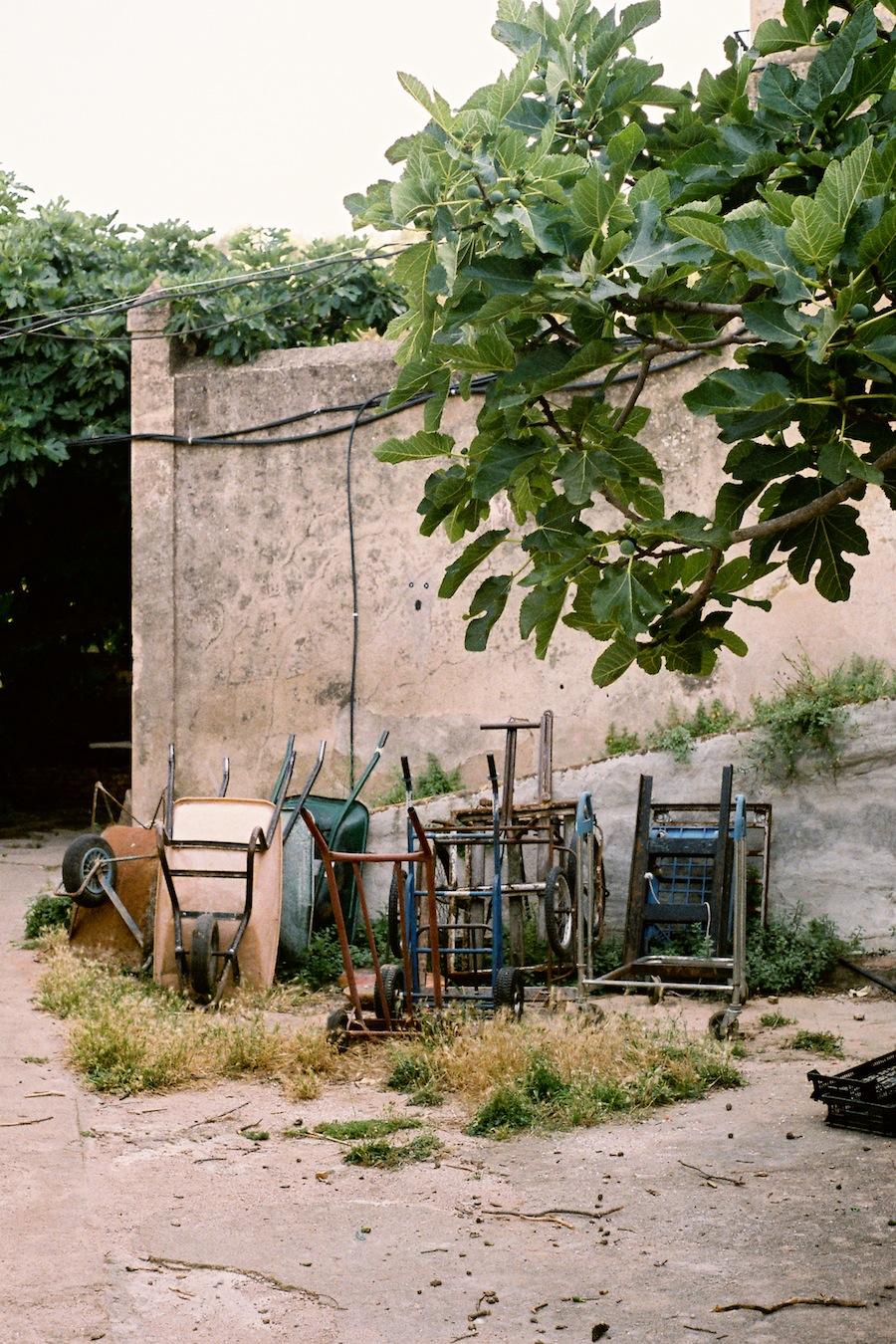 http://lafilladelfotografu.irenavisa.com/files/gimgs/92_f1000019-1.jpg