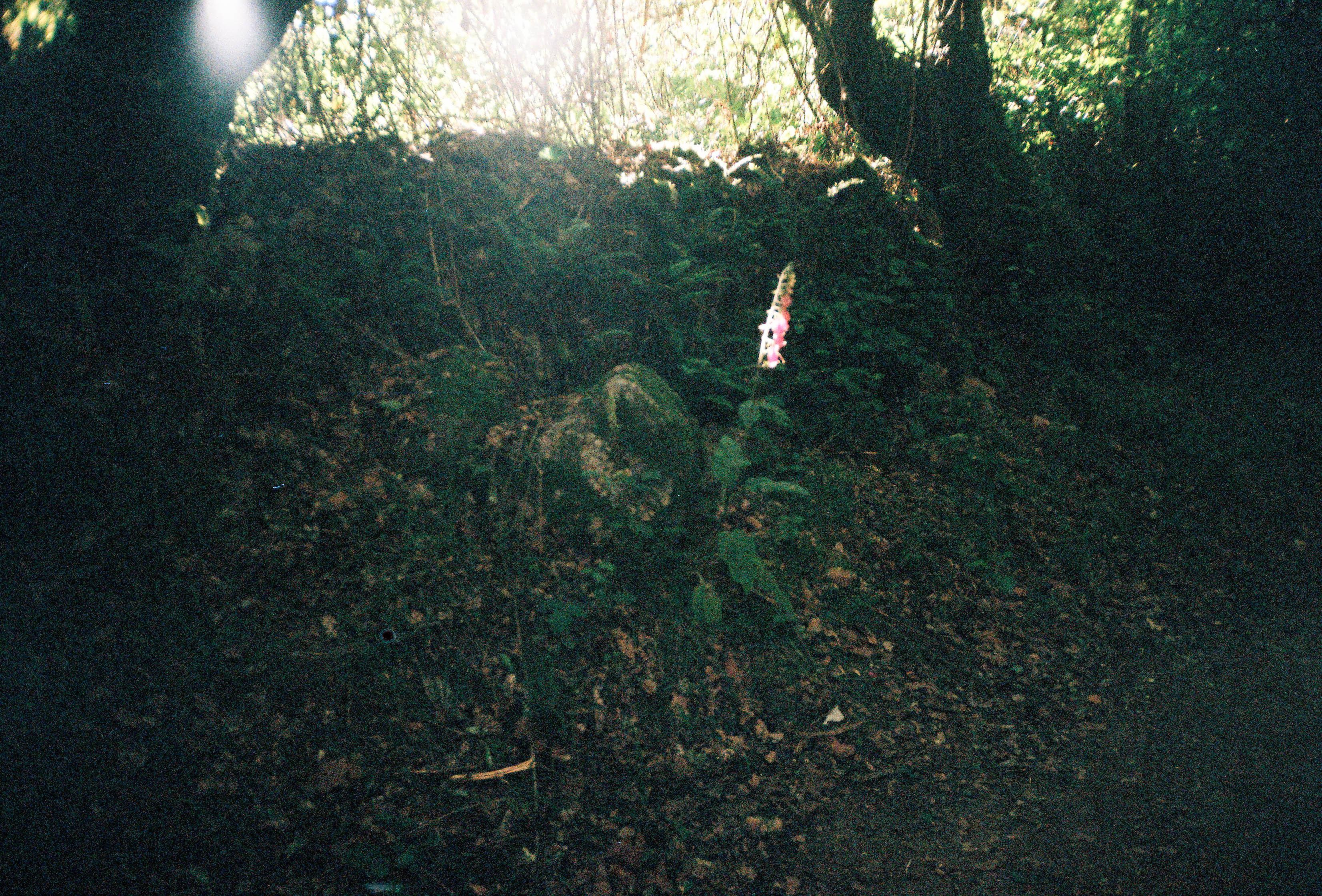 http://lafilladelfotografu.irenavisa.com/files/gimgs/97_f1000001-1_v2.jpg