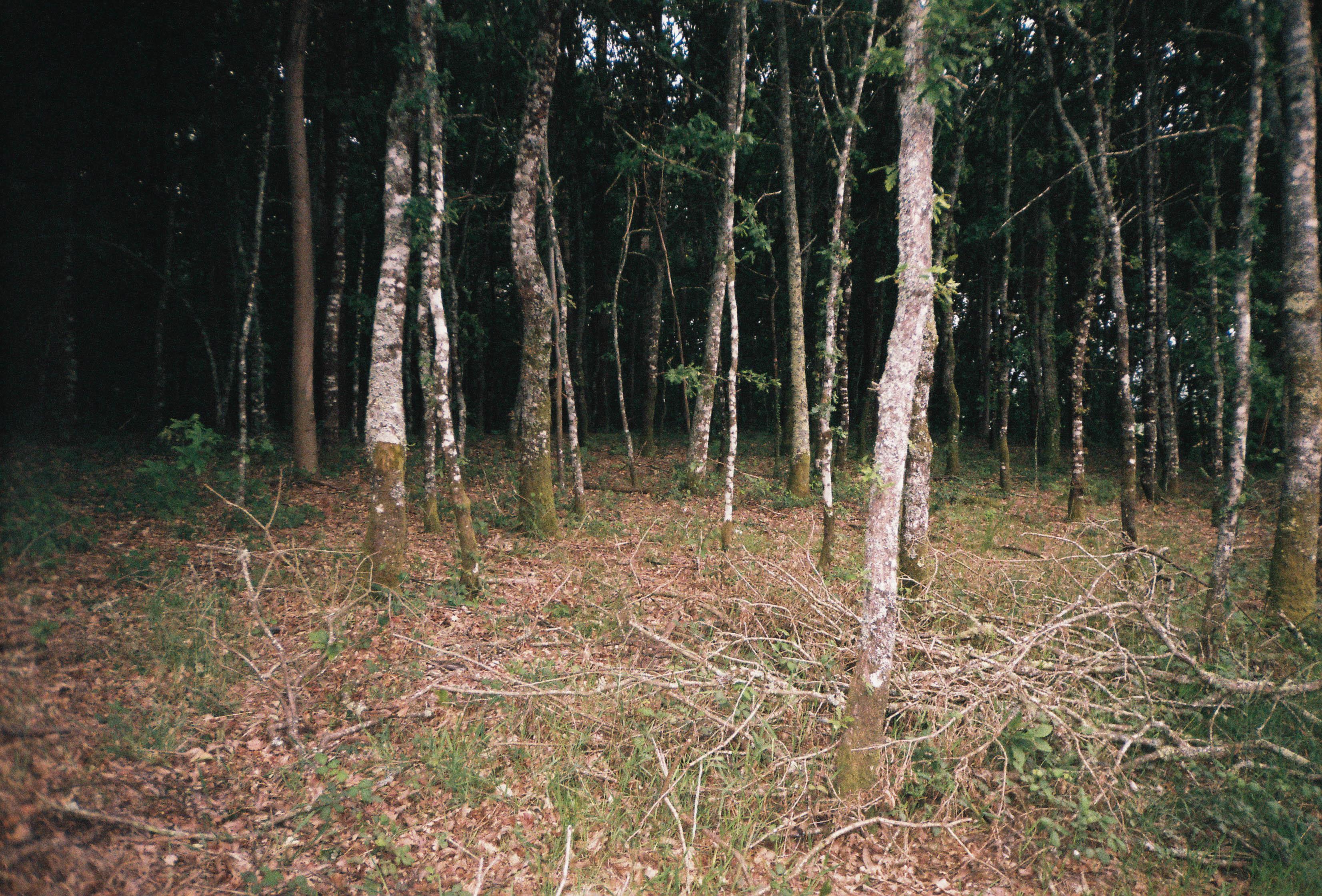 http://lafilladelfotografu.irenavisa.com/files/gimgs/97_f1000008-1.jpg
