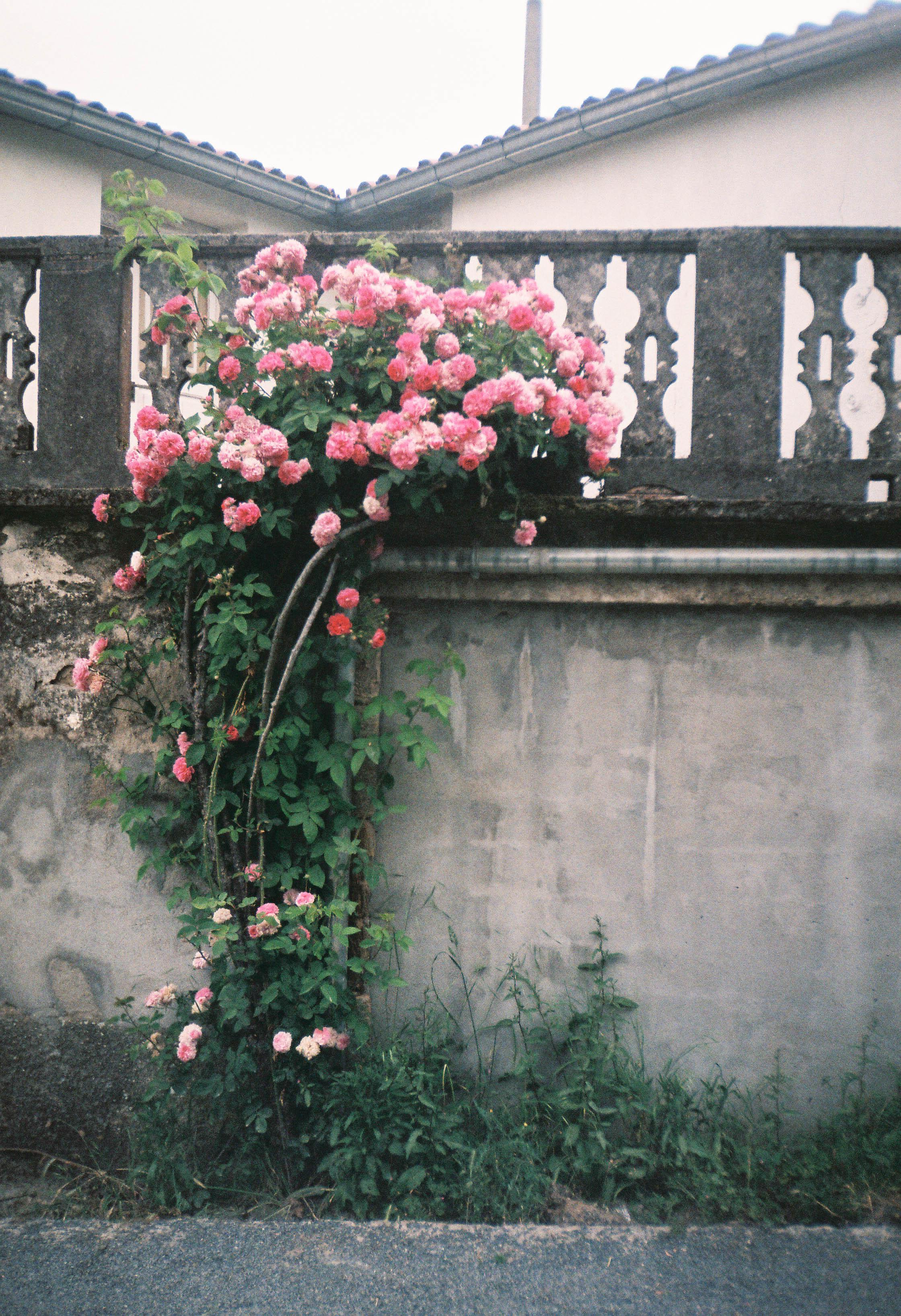 http://lafilladelfotografu.irenavisa.com/files/gimgs/97_f1000009-1.jpg