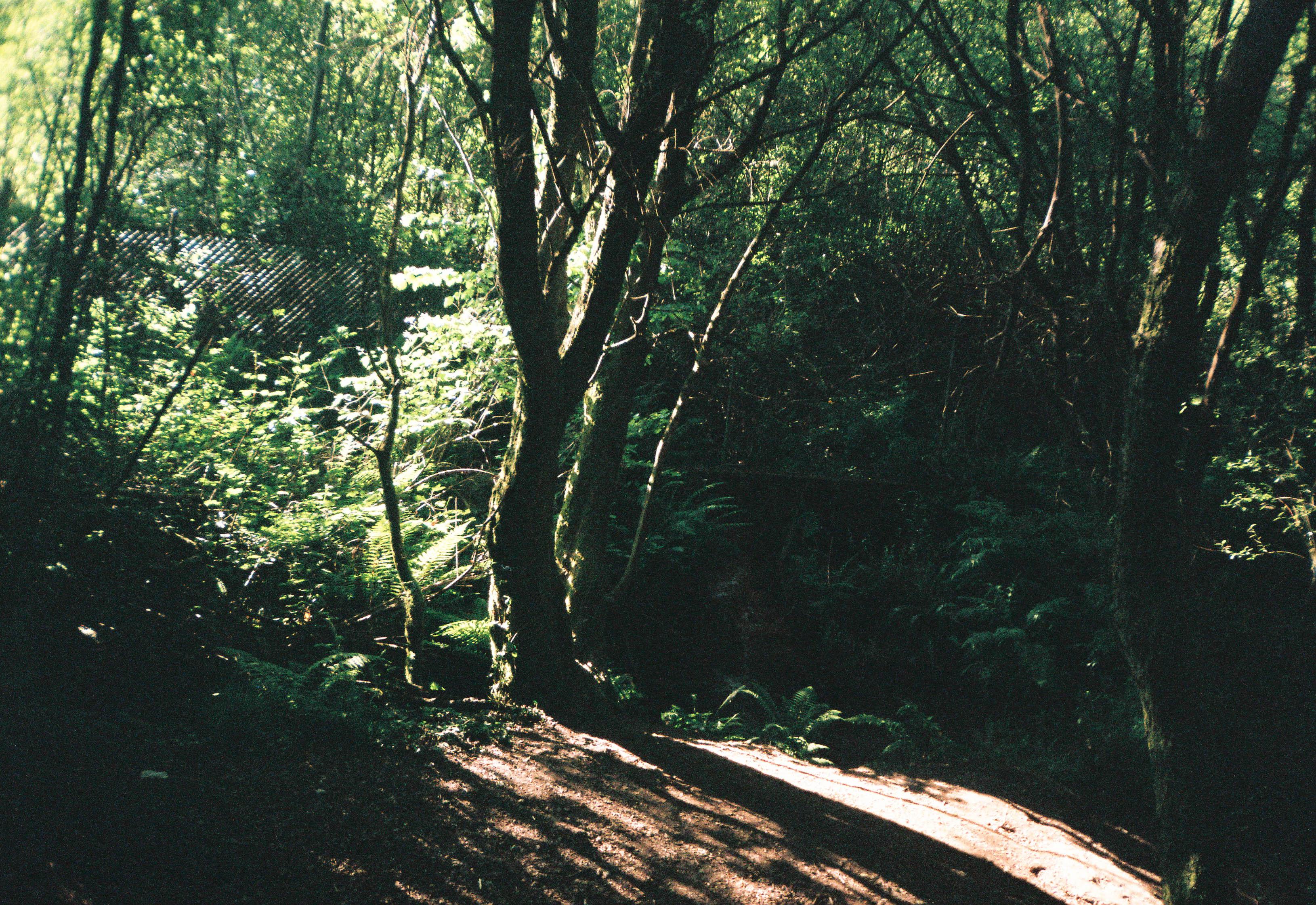 http://lafilladelfotografu.irenavisa.com/files/gimgs/97_f1000015-1_v4.jpg